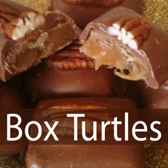 store-category-boxturtles.jpg